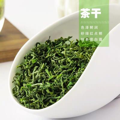 日照绿茶2020新茶高山云雾茶叶绿茶散装浓香毛尖春茶共500g