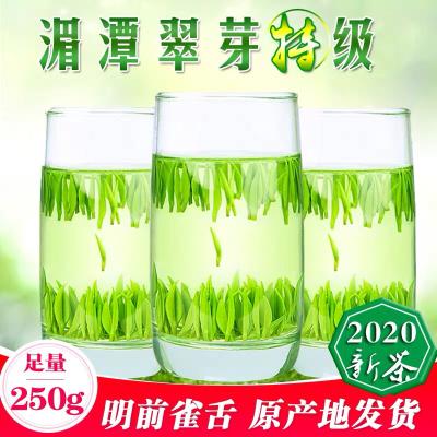 湄潭翠芽2020新茶明前特级贵州茶叶雀舌绿茶毛尖春茶袋装散装250g