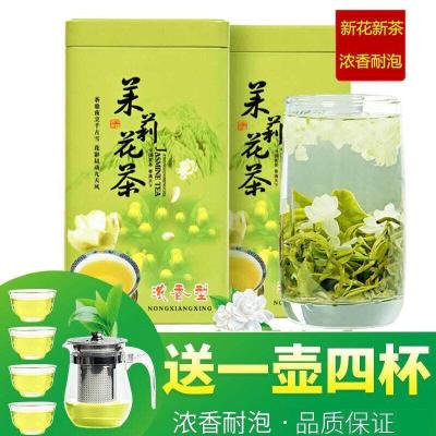 茉莉花茶 2020新茶  茉莉花茶叶浓香型 罐装礼盒装500g
