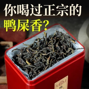 潮州凤凰单丛茶鸭屎香茶叶浓香型 头春单丛250g 天然绿色茶农直批
