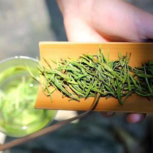 正宗安吉白茶珍稀绿茶2020新茶上市明前白茶安吉茶叶散装罐装