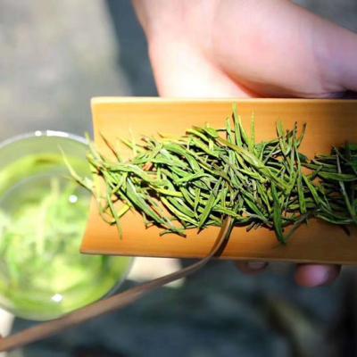正宗安吉白茶珍稀绿茶2021新茶上市明前白茶安吉茶叶散装罐装