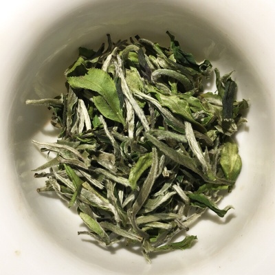 今年新茶白牡丹福鼎的白茶清香型茶叶厂家直销全国包邮500克散装