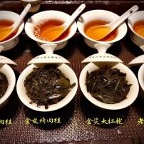 武夷山大红袍肉桂水仙乌龙茶清香浓香散装礼盒装100g新茶马头岩肉桂