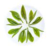 高山云雾 绿茶 日照茶叶 散装庐山绿云雾茶125g
