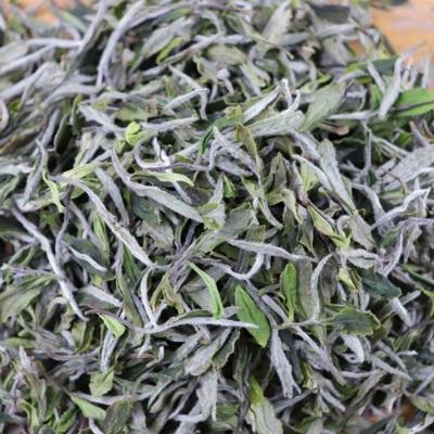 2020年福鼎白茶(春茶)—高山牡丹,花香浓郁,茶汤清澈,