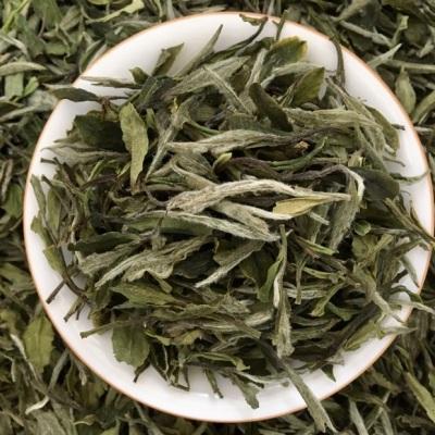 新品上市 福鼎白茶2020明前新茶典藏白牡丹一斤散茶 冰糖甜牡丹