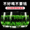 【新茶试喝】雀舌2020新茶绿茶毛尖特级春茶四川峨眉山竹叶茶50g