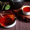 2008年勐海料熟茶散茶,一级料,茶汤干净 500克