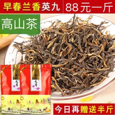 早春老树 英德红茶 英红九号 高山兰香型9号
