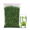 2020新茶  特级散装绿茶250g