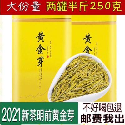 黄金芽茶叶2021新茶特级正宗安吉白茶高山绿茶黄金茶250克罐装