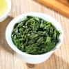 安溪铁观音茶叶2020新茶秋茶礼盒装特级浓香型乌龙茶叶散装500g
