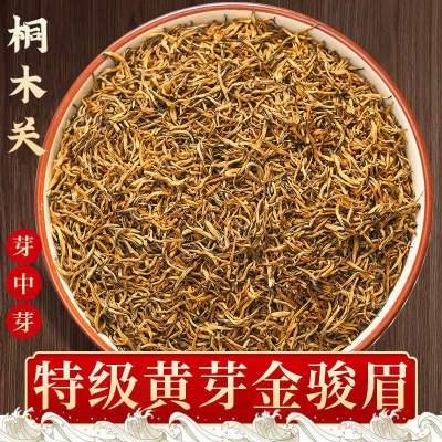 特级黄芽金骏眉2021新茶正宗明前浓香蜜香型养胃红茶茶叶袋装500g
