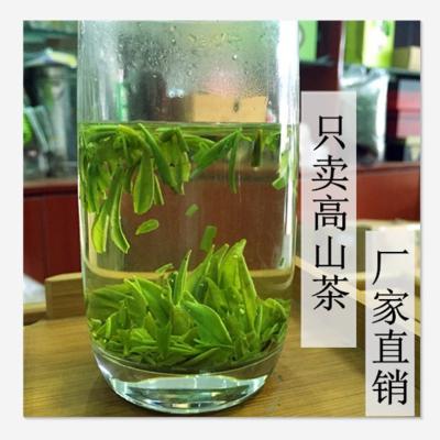 老茶树2021新茶明前龙井雀舌碎茶叶茶片四川散装500g特级绿茶包邮
