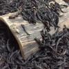 马头岩肉桂 马肉 大红袍茶叶武夷正岩乌龙茶散装水仙500g