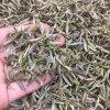 福鼎白茶2021新茶白毫银针首日芽散装特级茶叶500g