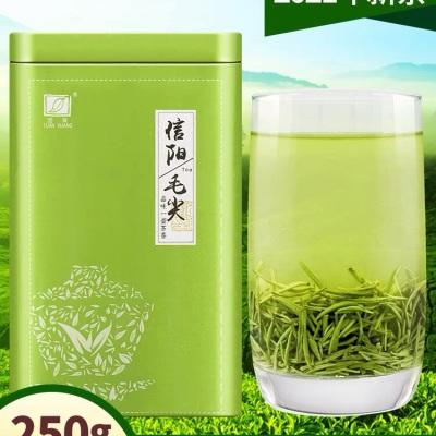 团黄毛尖茶叶春茶信阳毛尖2021新茶雨前嫩芽散装250g绿茶手工芽茶