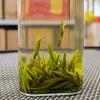 绿茶雀舌茶叶2021新茶毛尖明前春特级清香型竹叶嫩芽袋装散装500g