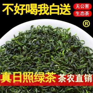 青茶2021日照绿茶初春茶新茶叶散装袋炒青板栗香500g豆香特级耐泡
