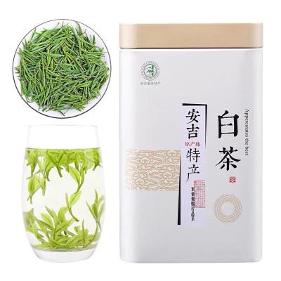 安吉白茶 2021年新茶雨前一级珍稀白茶茶叶春茶罐装正宗绿茶250g