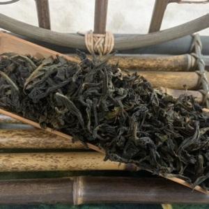 潮州凤凰单枞茶 清香型2021年春 乌龙茶 500g