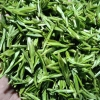 中国绿茶第一市