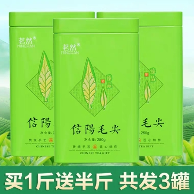 买一斤送半斤2020新茶 信阳毛尖绿茶春茶雨前毛尖茶叶散装750g