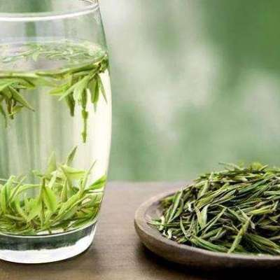 2019明前安吉白茶,口粮茶