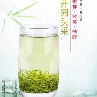 2019年开春高山毛尖50g一罐,120元/罐