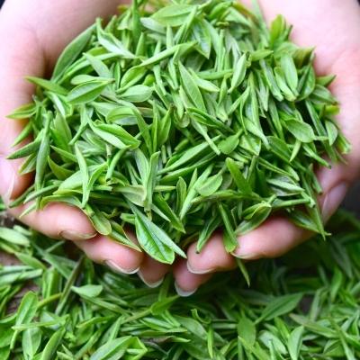 绿茶2020年新茶四川明前茶叶毛尖特级散装碧螺春浓香型500g毛峰茶叶