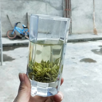 2020新茶贵州遵义凤岗锌硒有机茶雨前毛峰500g