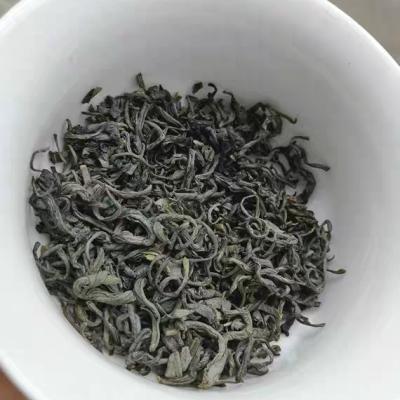 炒茶明前青炒茶潮汕揭西特产坪上炒茶新鲜青茶绿茶炒茶大洋炒茶1袋1斤包邮