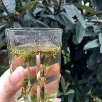 2019年龙井茶250克55包邮活动价售为止