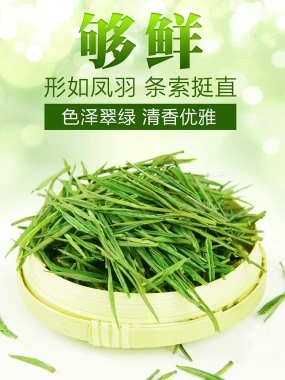 买1送1禾安堂正宗安吉白茶2020年新茶叶绿茶共200g