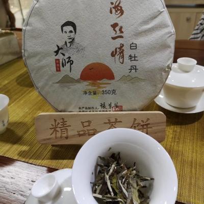 海丝情◆白牡丹 白茶 由国家权威评茶技能大师张荣生先生倾力打造