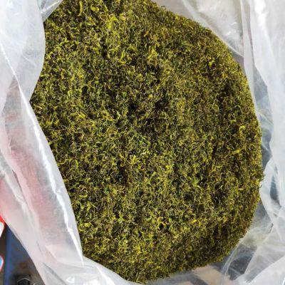 黄金芽绿茶500g