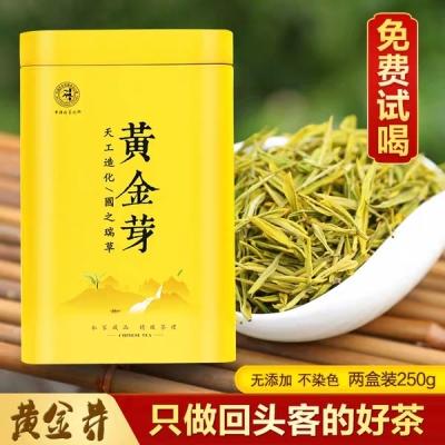 安吉白茶黄金芽明前特级2019春茶新茶250g罐装浙江正宗珍稀绿茶叶