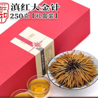 红茶特级蜜香大金针半斤礼盒装滇红茶浓香型金丝云南凤庆金芽茶叶