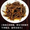 2020春茶  云南凤庆特级蜜香金螺滇红茶,礼盒款500克包邮