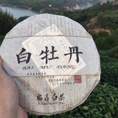 【收藏级重器】✅1饼2009年太姥高山白牡丹 350克