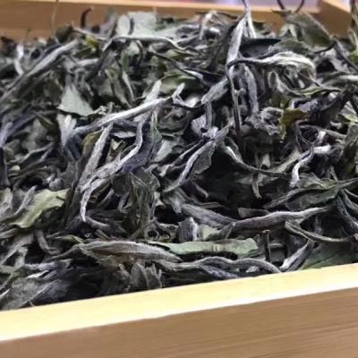 浅浅岁月,悠然人生一杯茶里渐渐释然2018年春牡丹,清香淡雅!