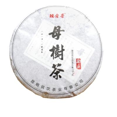 普洱茶生茶茶饼 2018年母树生茶 七子饼茶叶生茶357g
