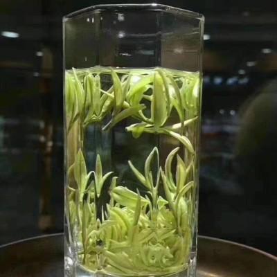 梓鼎汇2019年正宗高山明前安吉白茶50克