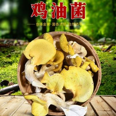 榆黄菌干货 鸡油菌干品云南特产香菇土特产野生菌250克 正品保障新货好