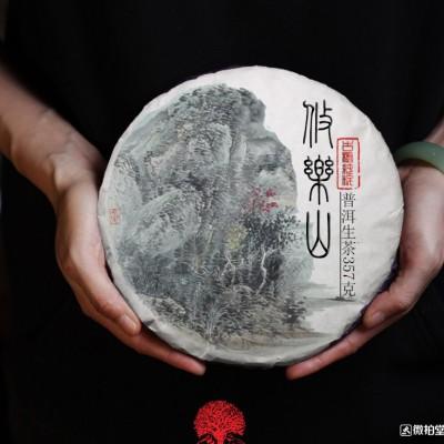 【2017早春】攸乐山古树纯料生茶1提7片5斤