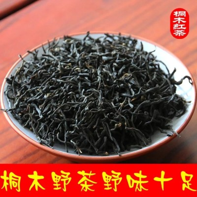 桐木野茶 武夷山桐木关特级正山小种红茶 桐木奇种 高山菜茶500g