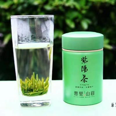 紫阳特级银针2020年新茶毛尖绿茶250g盒装