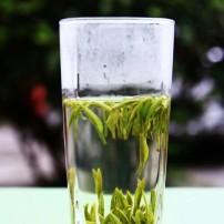 紫阳特级银针2020年新茶毛尖茶绿茶500g盒装