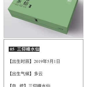 岩霸精品茶叶三仰峰水仙 性格:香纯幽长,兰花香,岩韵显
